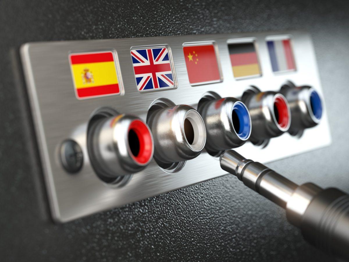 Autogestió web-Traducció de les cadenes (instruccions)