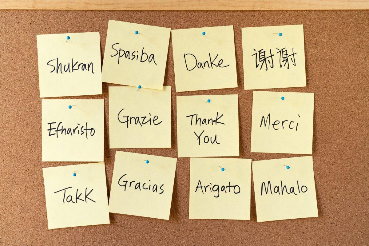 Idiomes-Traducció per idioma (a pressupostar)